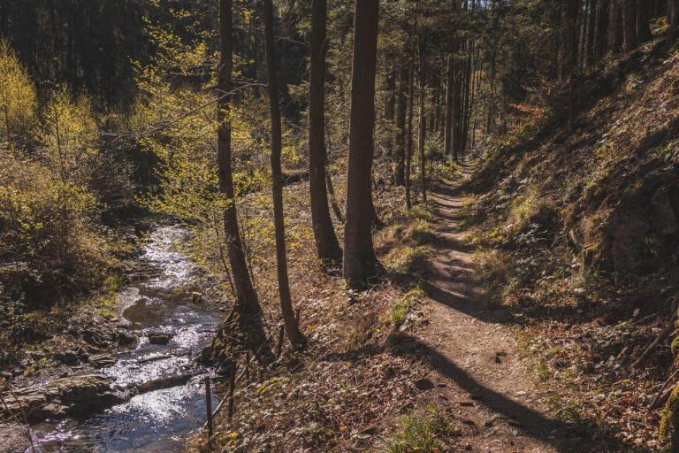 Steinway Trail 6614 768x512
